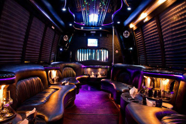 15 Person Party Bus Rental Bridgeport