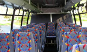 20 Person Mini Bus Rental Glastonbury