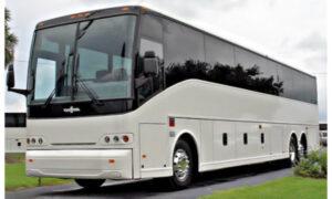 50 Passenger Charter Bus Glastonbury