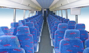 50 Person Charter Bus Rental Trumbull